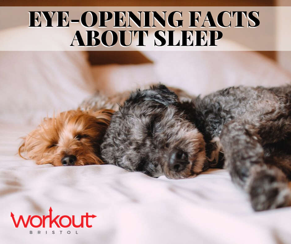 Eye-Opening Facts About Sleep